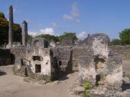 Каоле. Руины исламского города XII – XVIII вв. (автор А.А. Банщикова)