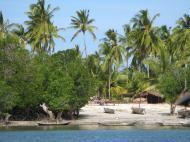 Танзанийская природа. Остров Сонго Мнара у южного побережья страны (автор Д.М. Б