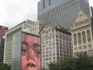 На фонтане Краун в чикагском парке Милленниум (скульптор Х. Пленса) сменяют друг друга почти тысяча лиц жителей города, включая, разумеется, и черные лица