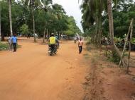 Бенин Университет Абомей - Калави. Главная аллея