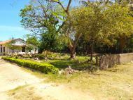Миссионерское кладбище при церкви (фото В.Н. Брындиной)