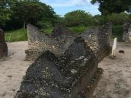 Руины Каоле, Багамойо (фото Н.Е. Хохольковой)