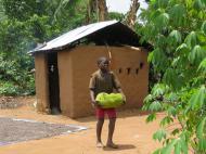 Мальчик несет свежесорванный джекфрут, деревня Накабаале