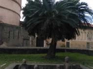 Памятник жертвам работорговли, Стоун Таун, Занзибар (фото А.А. Банщиковой)