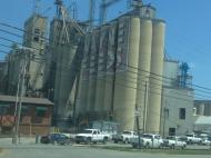 Одно из предприятий сельскохозяйственного концерна Wayne Farms в Гантерсвилле; на его фабриках работает большая часть проживающих в близлежащих городах африканцев и гаитян, как и многие черные американцы (фото В.В. Усачевой)