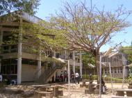 На кампусе Университета Дар-эс-Салама (автор А.А. Банщикова)