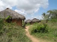 Деревня на острове Килва у южного побережья Танзании (автор Д.М. Бондаренко)
