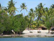 Танзанийская природа. Остров Сонго Мнара у южного побережья страны (автор Д.М. Бондаренко)
