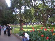 Парк в центре Хараре